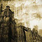 Strasbourg by Blaz Erzetic