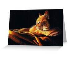 By the Light of the Fire Greeting Card