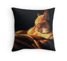 By the Light of the Fire Throw Pillow