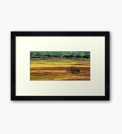 The Colours of the Land Framed Print
