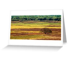 The Colours of the Land Greeting Card
