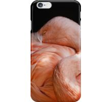Sleeping Flamingo iPhone Case/Skin