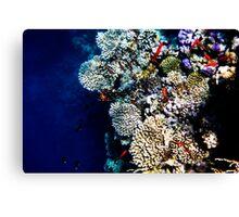 Red Sea 432  Canvas Print