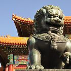 The Forbidden Palace - Beijing by darylbowen