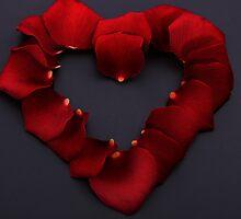 flowers love by luigi diamanti