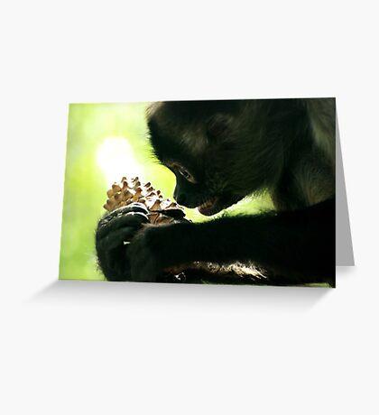 Black-Handed Spider Monkey Greeting Card