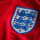 three lions by markbailey74