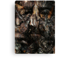 Spirit of the Woods 4 Canvas Print