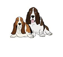 Two Bassets  Photographic Print