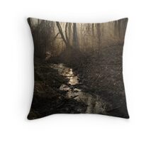 42 Throw Pillow