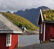 Red homes by Annbjørg  Næss