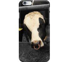 Bull iPhone Case/Skin