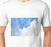 Swallows wheeling among the clouds Unisex T-Shirt