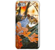 A Time to Be Still... iPhone Case/Skin