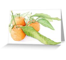 Clementine Oranges Greeting Card
