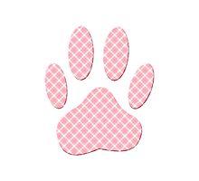 Pink And White Tartan Dog Paw Print Photographic Print