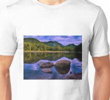 reflections of avalanche Unisex T-Shirt