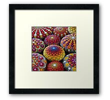 Warm Tone Mandala Stone Collection Framed Print
