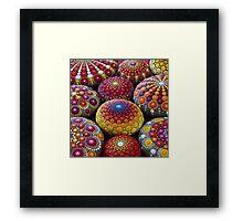 Warm Tone Mandala Stone Collection Framed Print