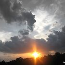 Dragon Sunfire by Debbie Robbins