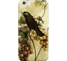 Red-winged Blackbird... iPhone Case/Skin