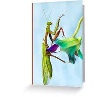 Mantis climbing Orchids Greeting Card