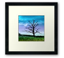 Dead Tree in Meadow Colorized Framed Print