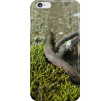 Weathered Fence Post | Wisconsin Woodlands iPhone Case/Skin