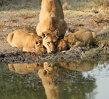 Family thirst quenching! by jozi1