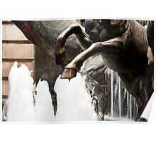 Splashing Hooves Poster