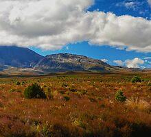 Mountain Panorama by Chris  Randall