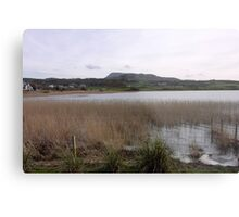 Dunfanaghy Donegal - Ireland Metal Print