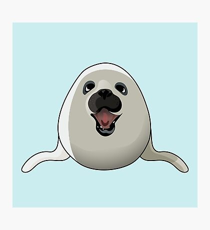A Friend Seal Photographic Print