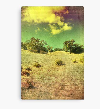 The Bright Happy Days Canvas Print
