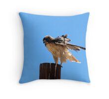 Redtail Hawk Throw Pillow