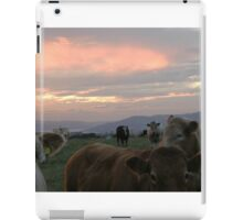 Cow sky Derry Ireland iPad Case/Skin