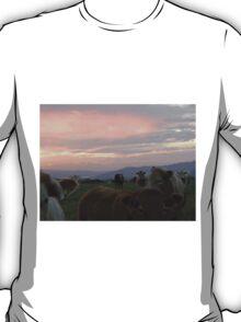 Cow sky Derry Ireland T-Shirt