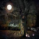 Fall Equinox - Mabon by Judi Taylor