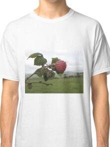 The 1st raspberry Classic T-Shirt