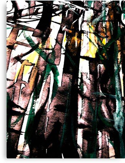 bamboo shadows.... by banrai