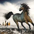 Wild Horses by Shanina Conway