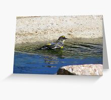 """Getting Pretty"" Yellow Rumped Warbler Greeting Card"
