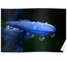 Rain reflections Poster
