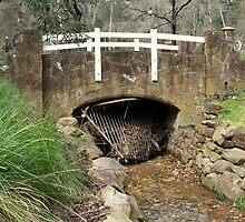 old bridge by fazza