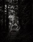 Each step takes you to hell or heaven by clickinhistory