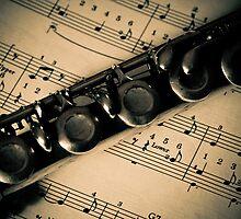 Play me a tune  by Nina  Matthews Photography