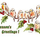 7 Little Robins - Season&#x27;s Greetings! by Maree Clarkson