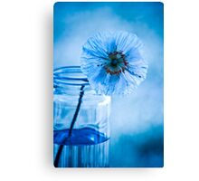 What a blueeeeee day  ~ sold 2 YAY !!! Canvas Print
