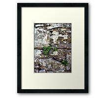 Abbey Wall Framed Print
