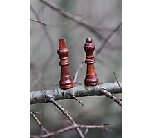 We are not safe out on this limb ... SOLD one YAY !! Photographic Print
